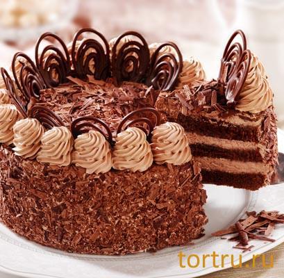 Кондитерский цех шоколадница фото тортов