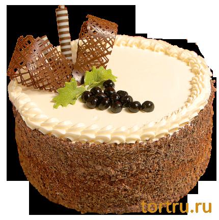 Торт тирамису как в шоколаднице