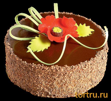 Шоколадница ставрополь торты цены