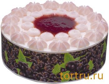 """Торт """"Смородиновый"""", Мой, Ногинск"""