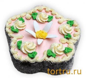 """Торт """"Татьяна"""", Вкусные штучки, кондитерская, Обнинск"""